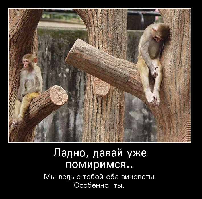 images_36